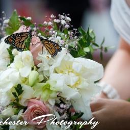 Clares Wedding-24